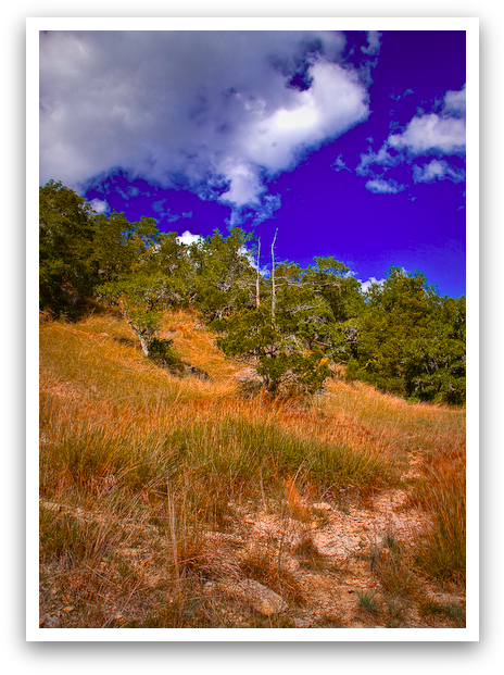 Up Hill Climb
