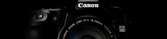 Canon 50D Week