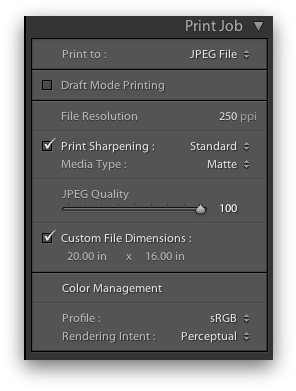 Lightroom Print Job Settings