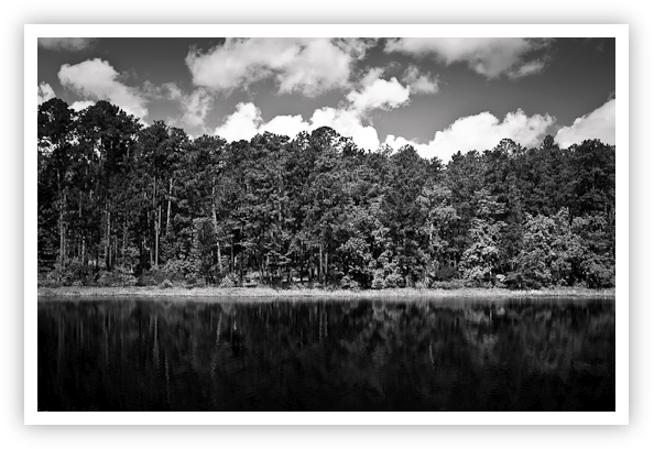 Reflection in Black & White