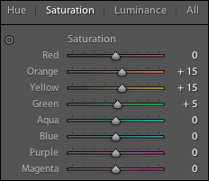 Saturation Adjustments