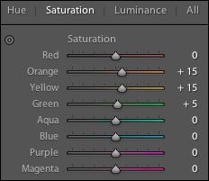Saturation Adjustments