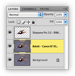 Blending Layers in Photoshop