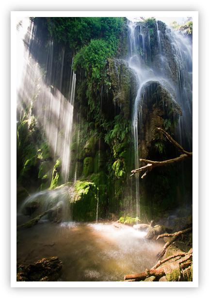 Gorman Falls in the Spring