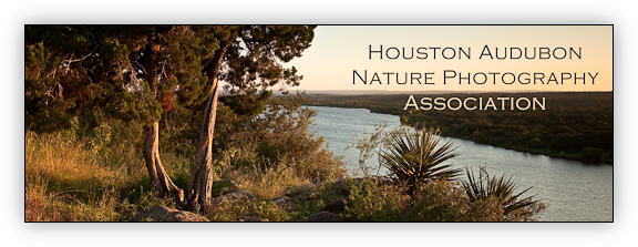Houston Audubon Nature Photography Association