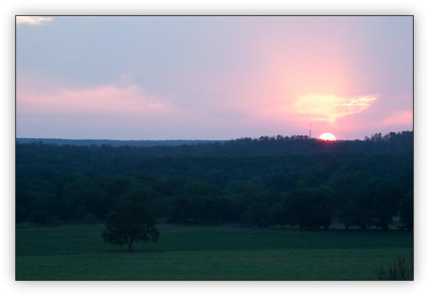 Country Sunset Original