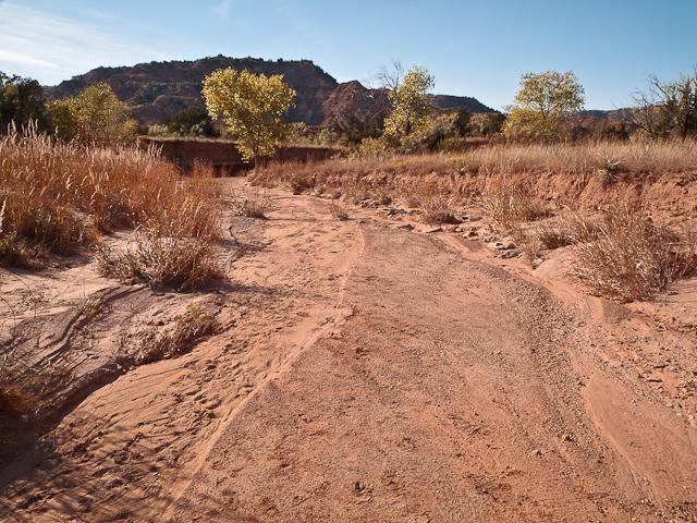 Footprints in Little Sunday Creek