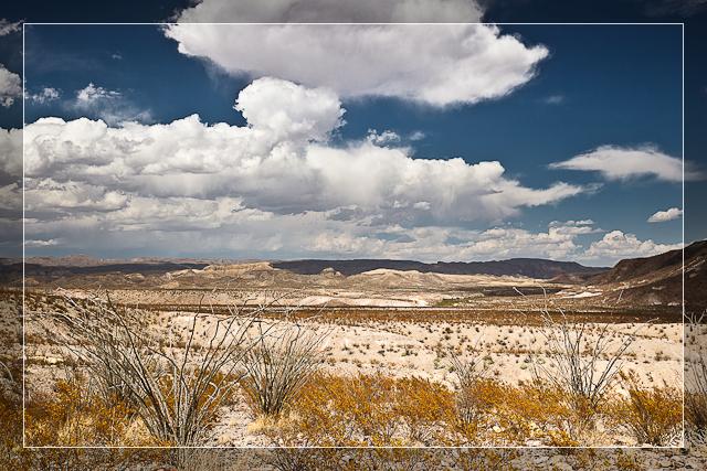 High Desert Plains