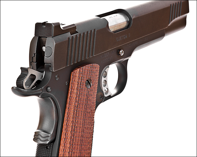Kimber Competition Gun - Details
