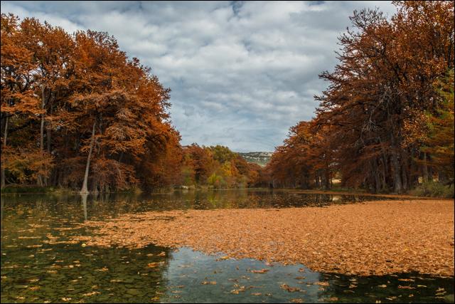 Autumn on the Frio River