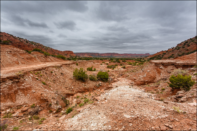 Cold Day at Caprock Canyons